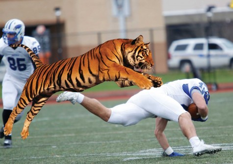Bengals maul Hawks in brutal beat down at Coyer Field