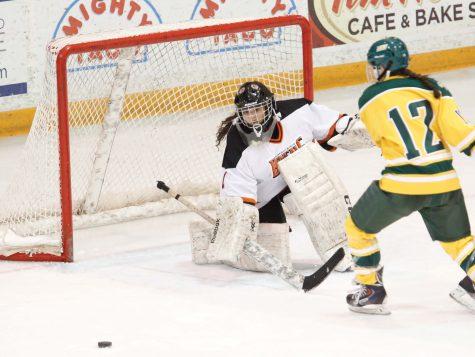 Women's hockey drops two vs No. 3 Elmira