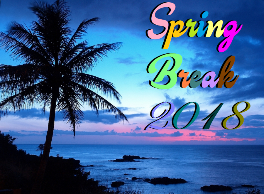 Ideal+fashions+for+your+ideal+spring+break