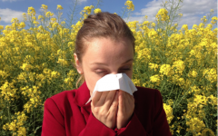 Don't let allergies stop you from living your best life