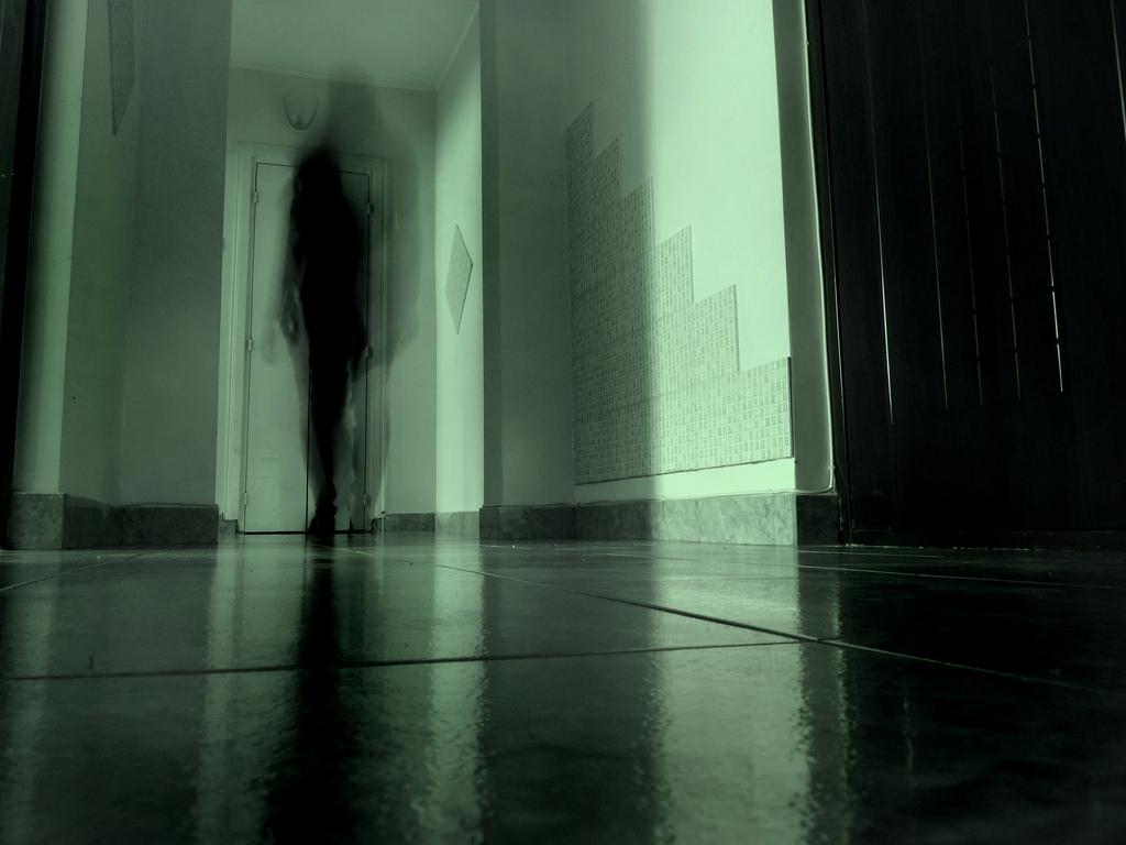Haunted Terminals