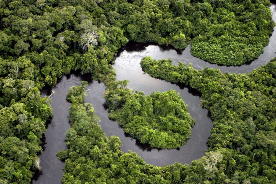 Why we should care about the Amazon