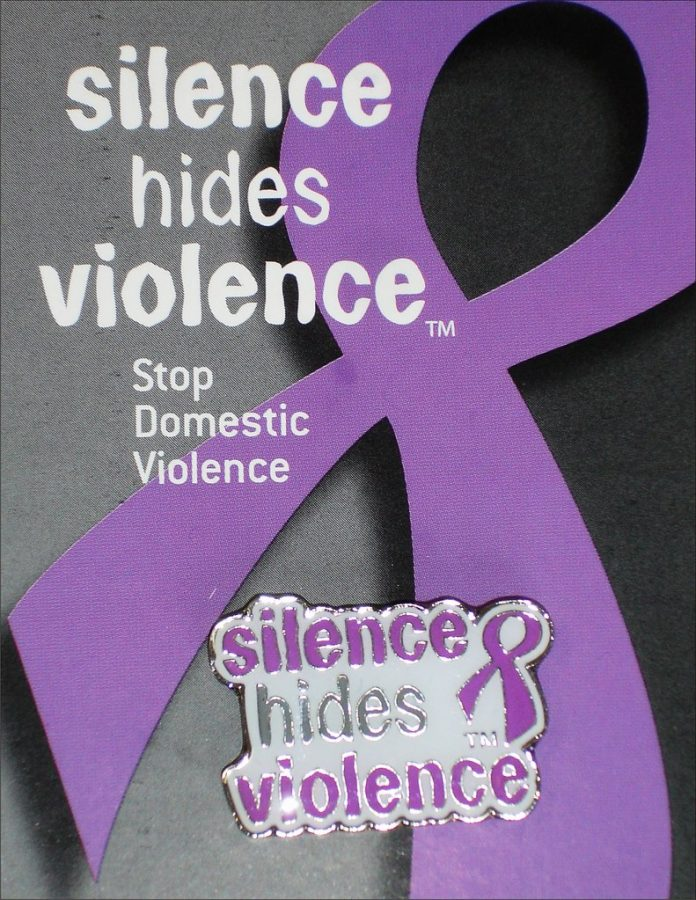Rise+of+Domestic+Violence+in+2020