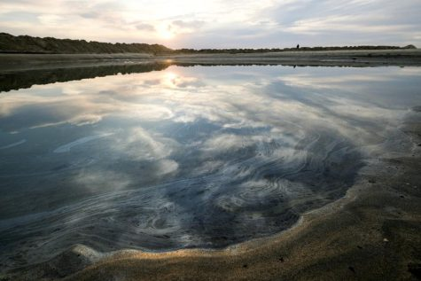 Oil in the waters of the Pacific. Photo credit: AP Photo/Ringo H.W. Chiu