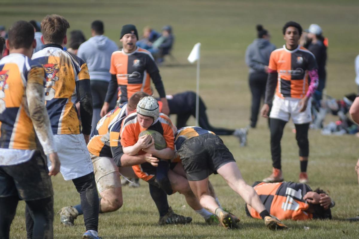 Buffalo Sevens Rugby Tournament Taraba Home Review